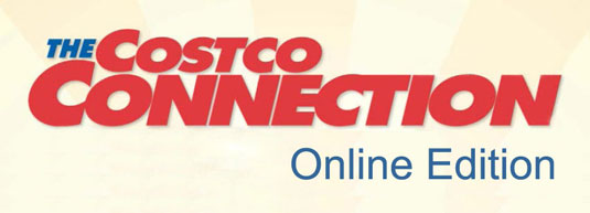 ConnectionLogo_OnlineEdition1