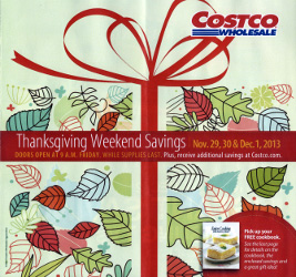 Costco Black Friday 2013 ad