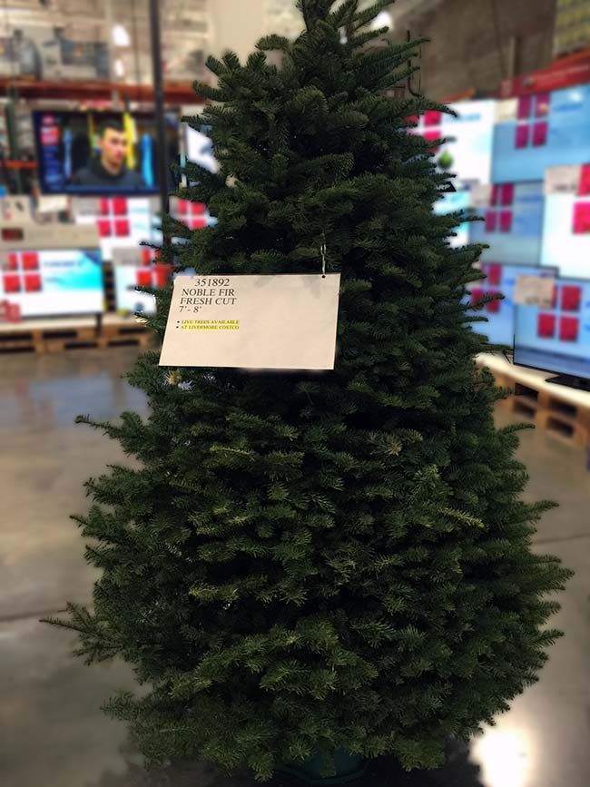 Costco Real Christmas Tree