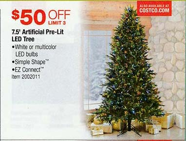 Christmas Tree on Sale